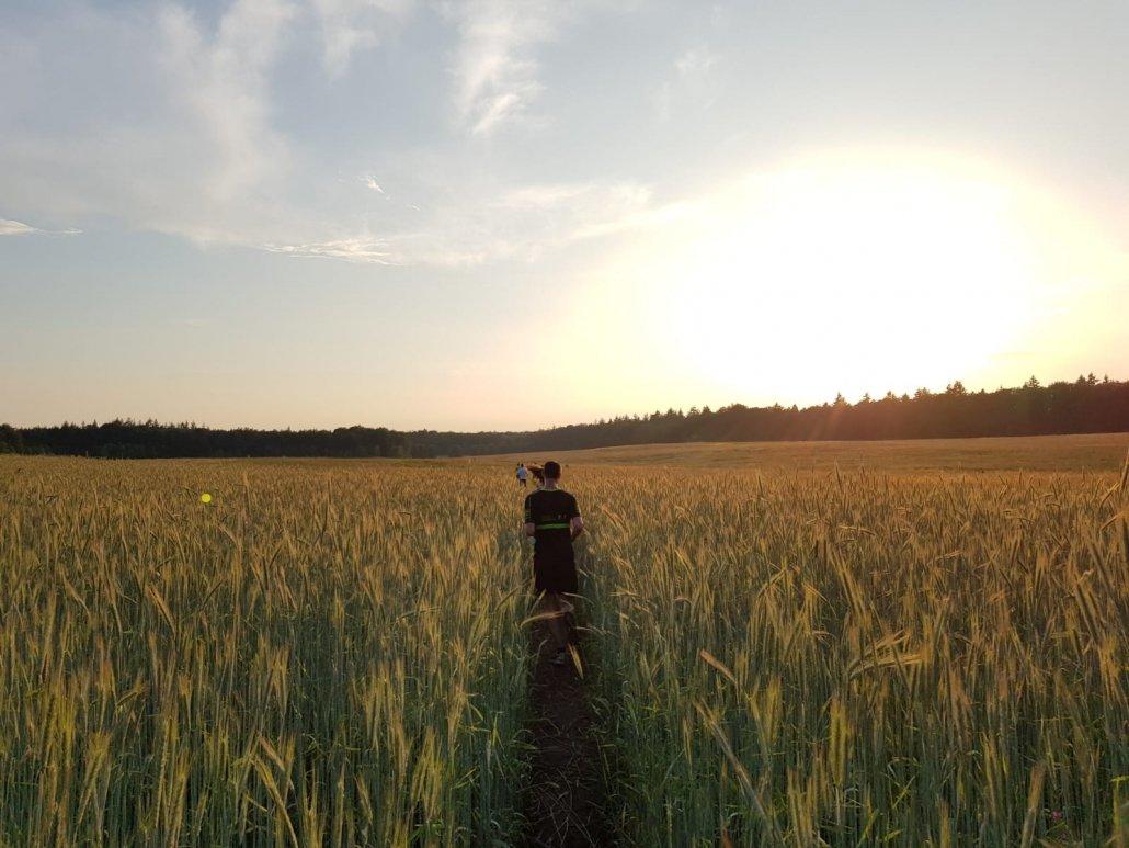 mooie-trainingslocaties - 180531 UHTT Driebergen Fieldcrossing 02 1030x773 - Prachtige looptraining op 'Fieldcrossing' bij Driebergen - Utrechtse Heuvelrug, trainen, Nederland, Hardlopen, 2018