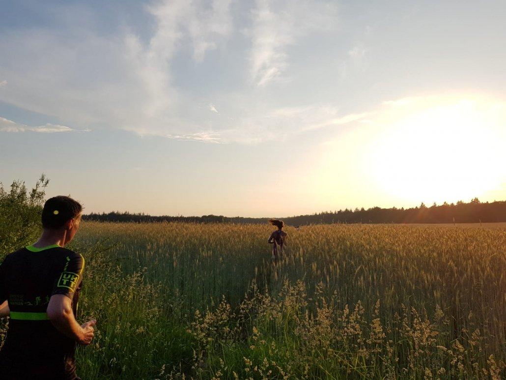 mooie-trainingslocaties - 180531 UHTT Driebergen Fieldcrossing 03 1030x773 - Prachtige looptraining op 'Fieldcrossing' bij Driebergen - Utrechtse Heuvelrug, trainen, Nederland, Hardlopen, 2018