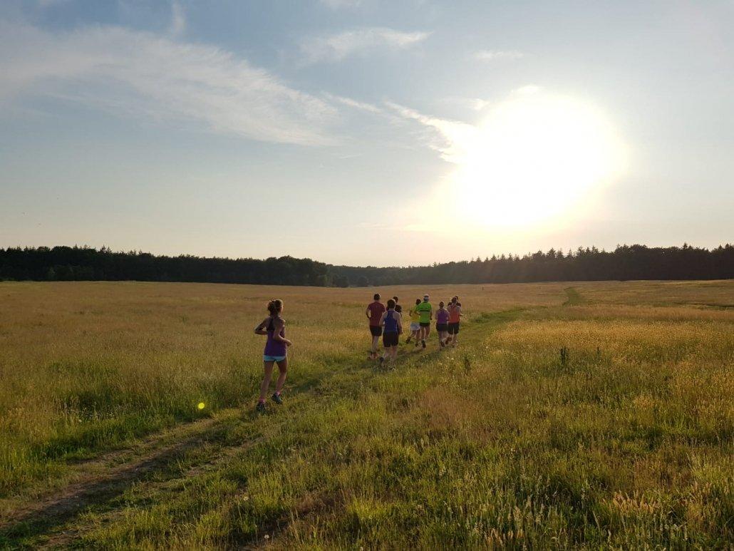 mooie-trainingslocaties - 180531 UHTT Driebergen Fieldcrossing 04 1030x773 - Prachtige looptraining op 'Fieldcrossing' bij Driebergen - Utrechtse Heuvelrug, trainen, Nederland, Hardlopen, 2018