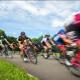 algemeen - NK Wielrennen Medici 2014 9 80x80 - Zomertrainingen triathlon op De Heuvelrug - Zwemmen, trainen, Hardlopen, Fietsen