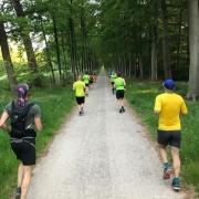 mooie-trainingslocaties - Running 15 meter 180x180 - Prachtige looptraining op 'Fieldcrossing' bij Driebergen - Utrechtse Heuvelrug, trainen, Nederland, Hardlopen, 2018