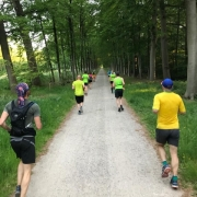tips-tricks - Running 15 meter 180x180 - Sfeerimpressie Triathlon Wissel Clinic door Hellas & UHTT - video, triathlon, trainen, tips, Marco, Clinic, 2018
